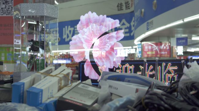 View through a shop window with a flower reflection