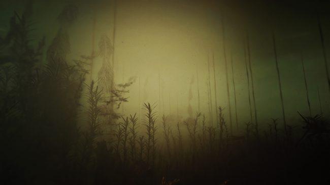 Foggy landscape. Photo.
